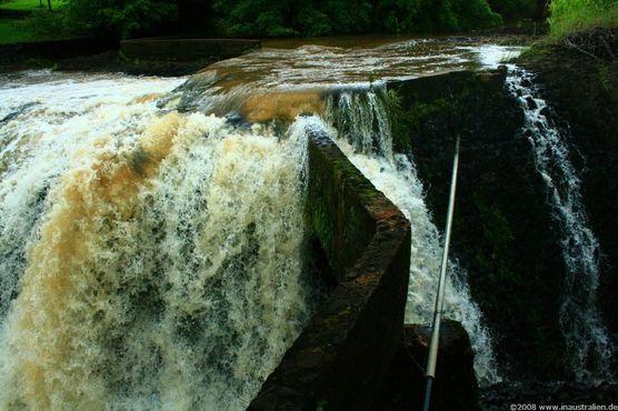 Бегущая по парку вода