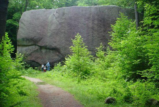 Валун«Мэдисон»в природной зоне в городе Мэдисон, штат Нью-Гэмпшир, США