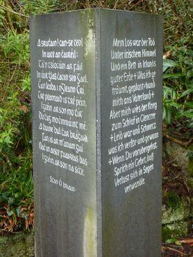 Стихотворение профессора Стэна О'Брайена на ирландском и немецком языках