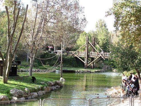 Зоопарк семьи Тиш