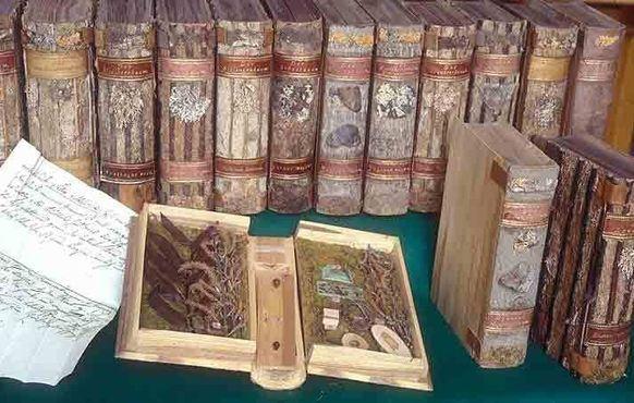 Образцы из зоологической коллекции