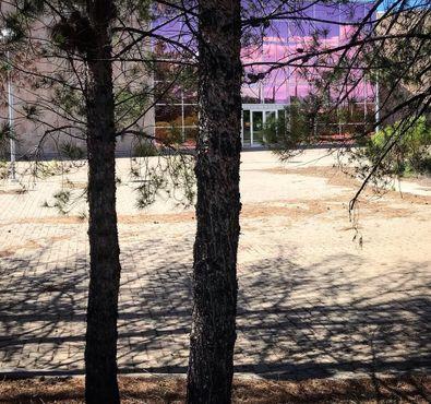За деревьями прячется розовый стеклянный вход