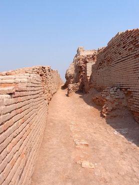 Цивилизация долины Инда действительно могла создать эти кирпичи