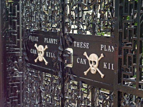 """Надпись на воротах: """"Эти Растения Могут Убить"""""""