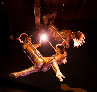 Одно из цирковых выступлений у Хейла