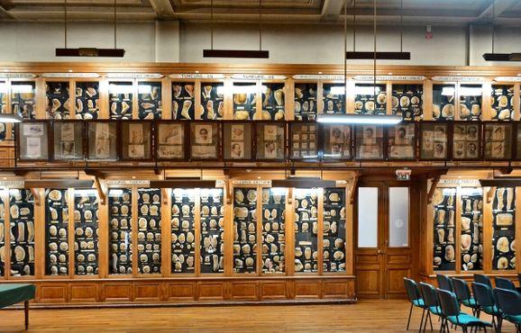 Музей муляжей