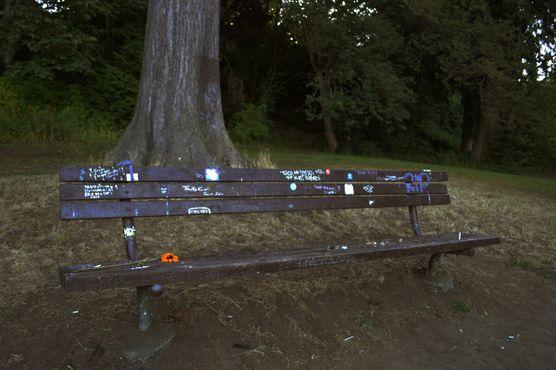 Скамьи памяти Курта Кобейна
