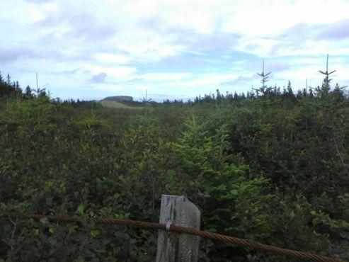 Вид с конца лётного поля. Кабельный забор отмечает границу