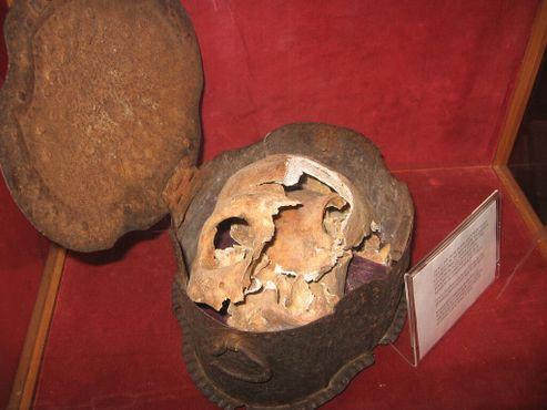 Череп, предположительно, одного из членов команды Христофора Колумба