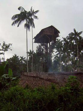 Дома находятся на высоте до 35 м
