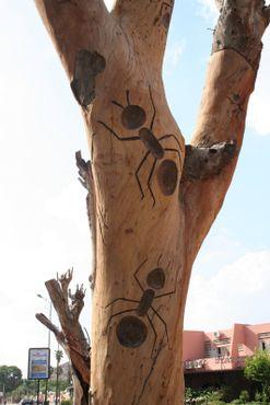 Древесные скульптуры в Марракеше
