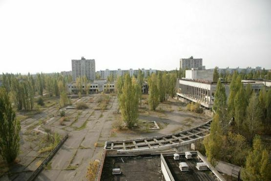 Центральная площадь Припяти, где когда-то жили 50 000 человек. После 22 лет забвения природа начала просачиваться сквозь бетон