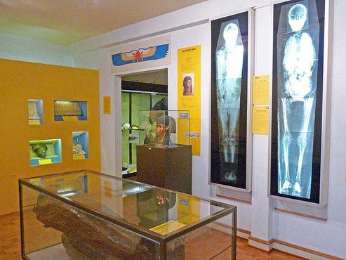 Древнеегипетский зал музея с мумией, погребальной маской и рентгеновским снимком мумии
