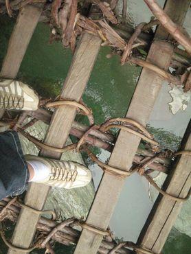Широко расставленные ламели