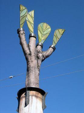 «Деревья-свидетели» Дженифер Диксон