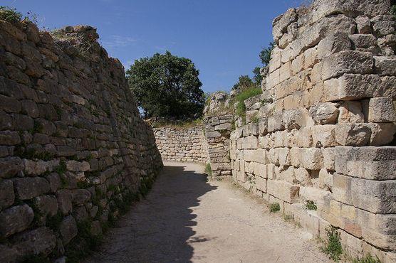 Знаменитые стены, прорваться сквозь которые помог деревянный конь