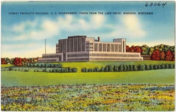 Старая открытка, на которой изображён Дом лесопродуктов, примерно 1930 год