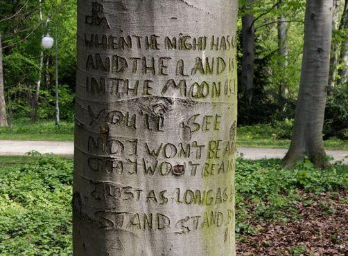 Дерево «Останься со мной»