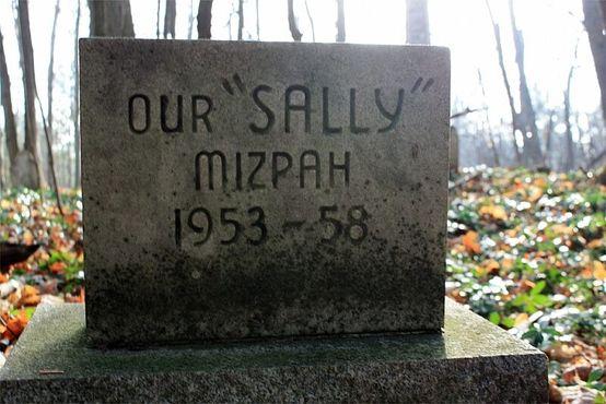 Салли, годы жизни 1953-1958