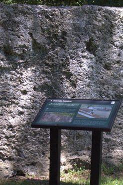 Стены из устричных раковин, песка и извести
