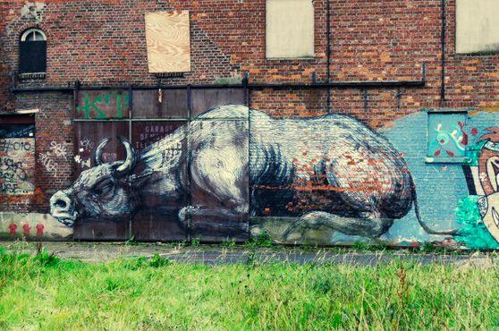Граффити с изображением быка