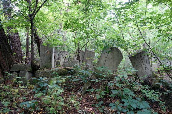 Заброшенные могилы