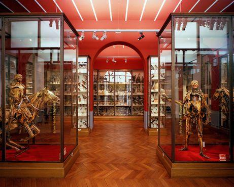 Музей Фрагонара