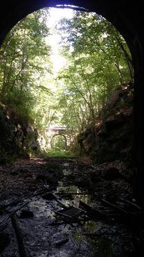 Выглядывая из восточного конца туннеля