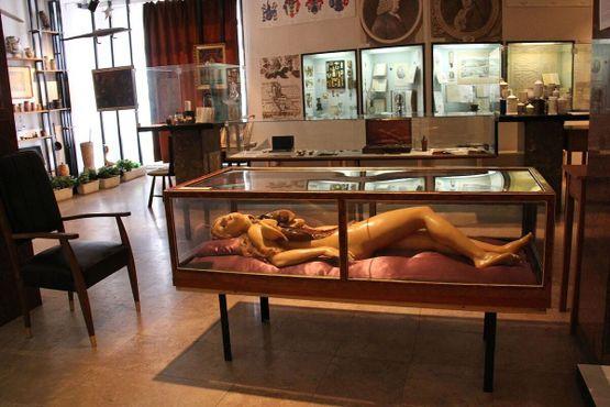 Музей истории медицины Земмельвейса в Будапеште