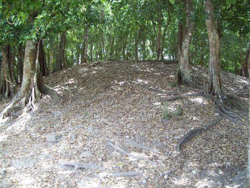Стоянка майя