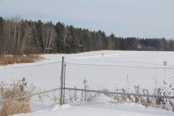 Вид через частное кукурузное поле на фактическую точку 45х90