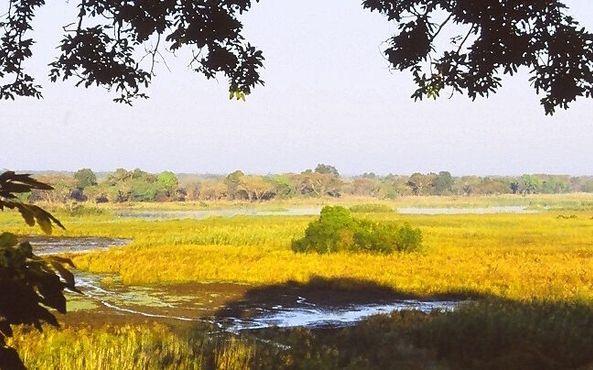Национальный парк Касанка