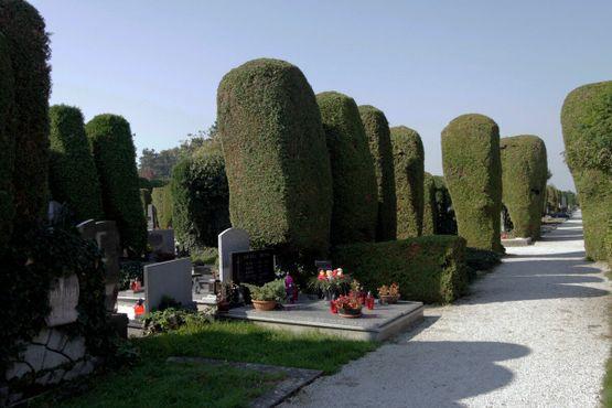 Вараждинское кладбище