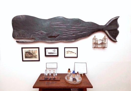 Кашалот и коллекция амбры в Архиве любопытных ароматов Афтель