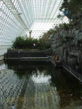 Вид на «океан» почти на 4 млн литров в Биосфере-2