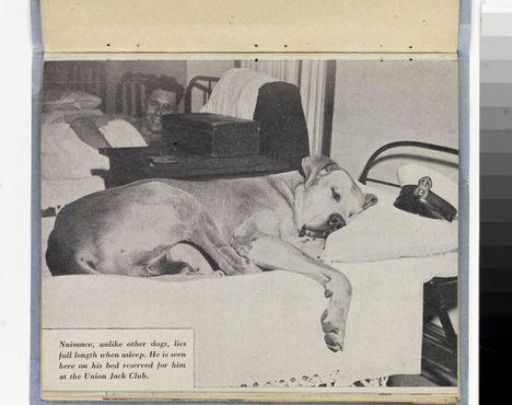 Матрос Помехана своей кровати в Юнион-Джек-Клубе