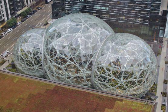 Амазонские сферы