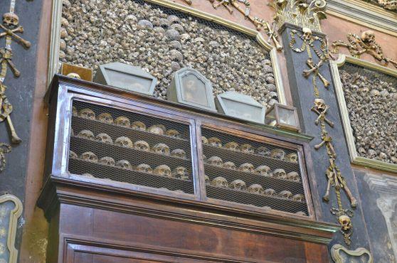 Полка с черепами и другими останками