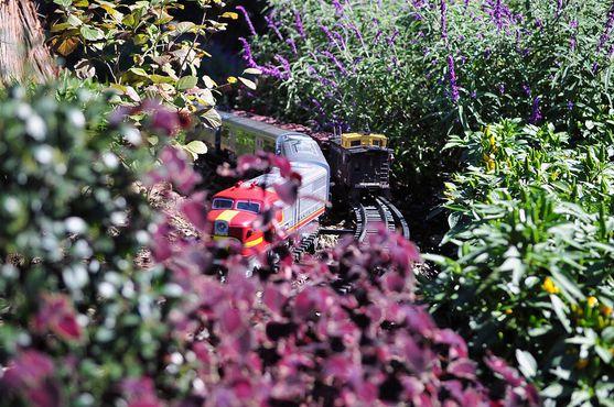 Модель железной дороги в Лонгвудских садах, 2010 г.