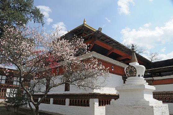 Кьичу-лакханг в Паро (Бутан)