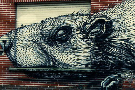 Граффити с изображением крысы