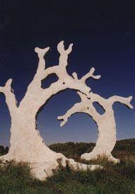 Деревья-призраки