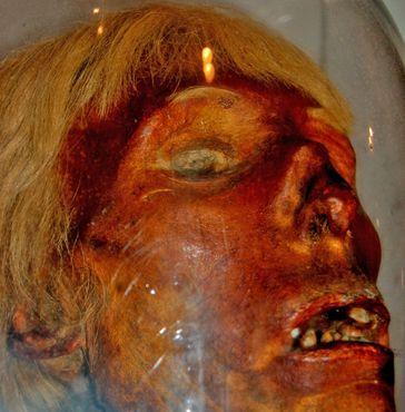Мумифицированная голова убийцы со светлыми волосами