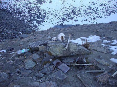 Человеческие скелеты на Озере скелетов Роопкунд