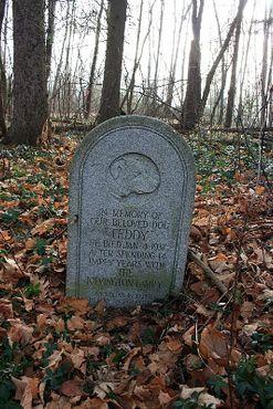 Кладбище домашних животных Хэппи Вудлон