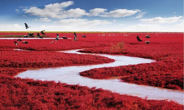 Красные берега