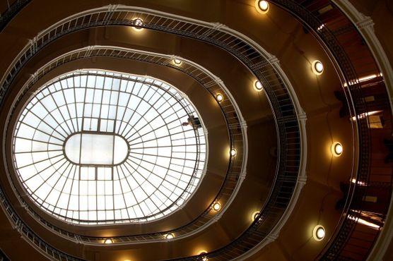 Книжная башня Ротонды с основателем Atlas Obscura Диланом наверху