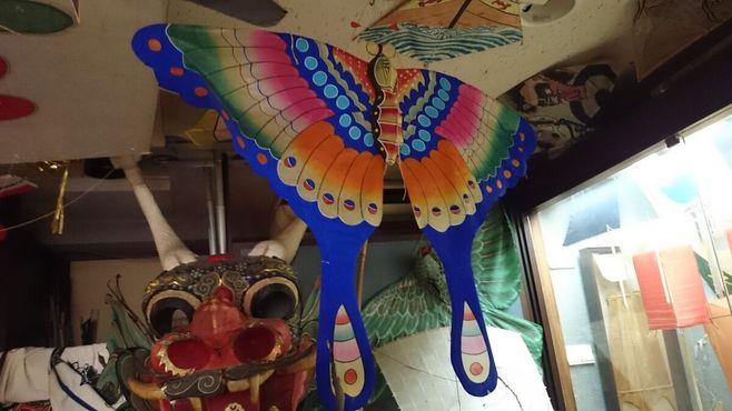 Музей воздушных змеев