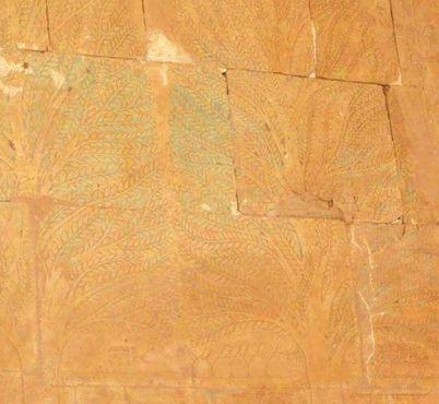 Изображение деревьев, привезённыхХатшепсутиз экспедиции