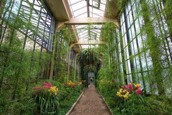 Лонгвудские сады
